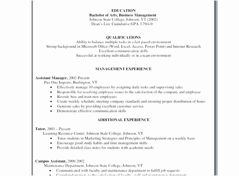 Executive Hybrid Resume Template Awesome Professional Resume Template Word Best 5 Hybrid Maker