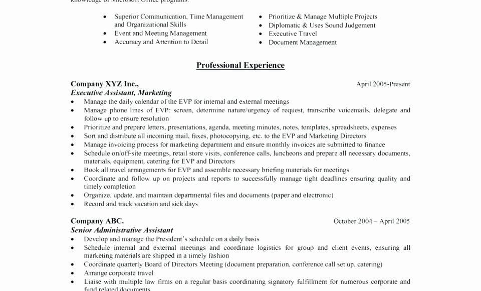 Executive Hybrid Resume Template Beautiful Hybrid Resume Template Executive Word Simple Free