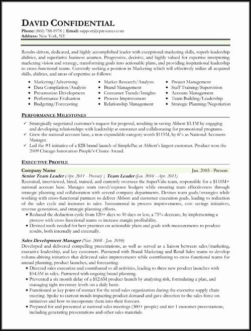 Executive Hybrid Resume Template Best Of Resume Samples