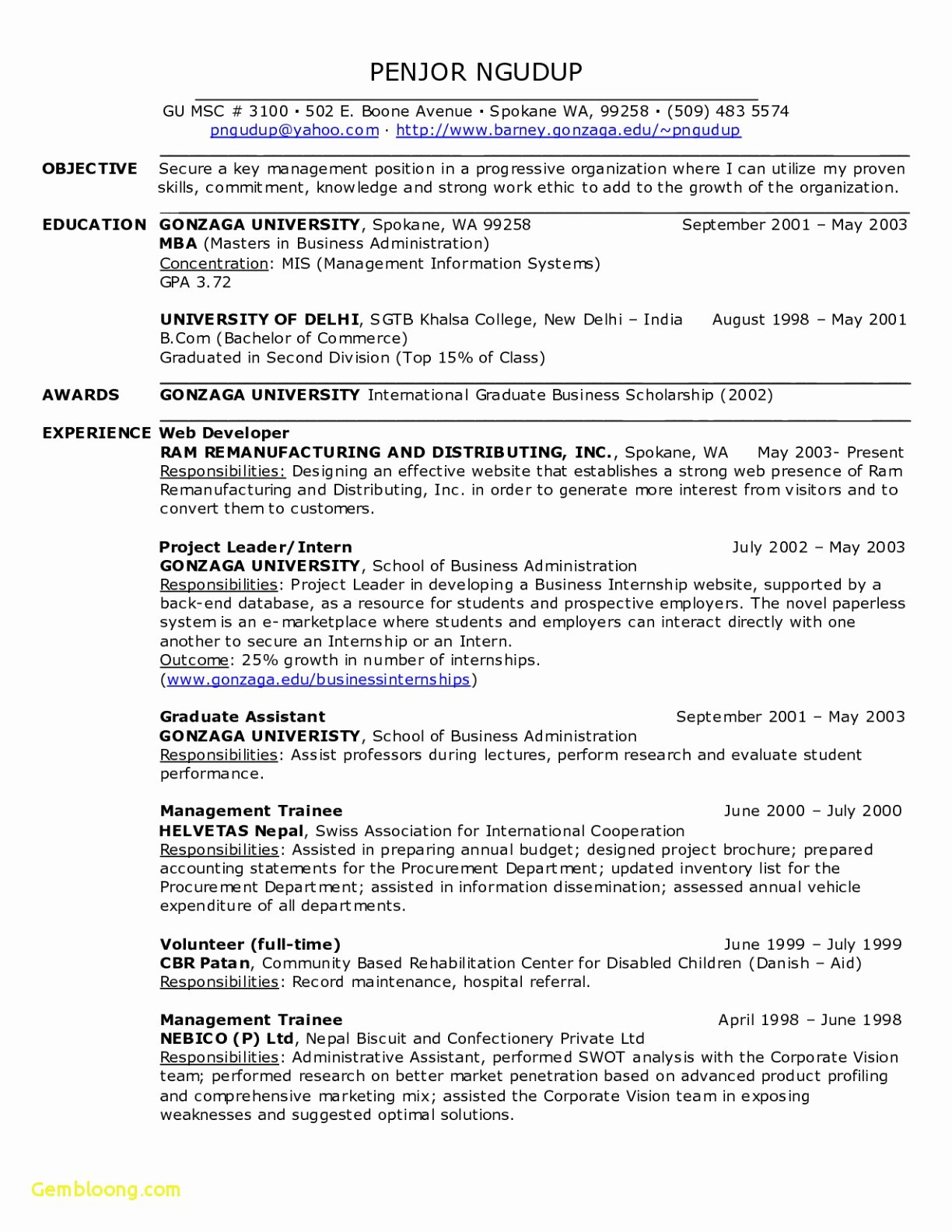 Executive Hybrid Resume Template New Executive Hybrid Resume Template – Hybrid Resume Template