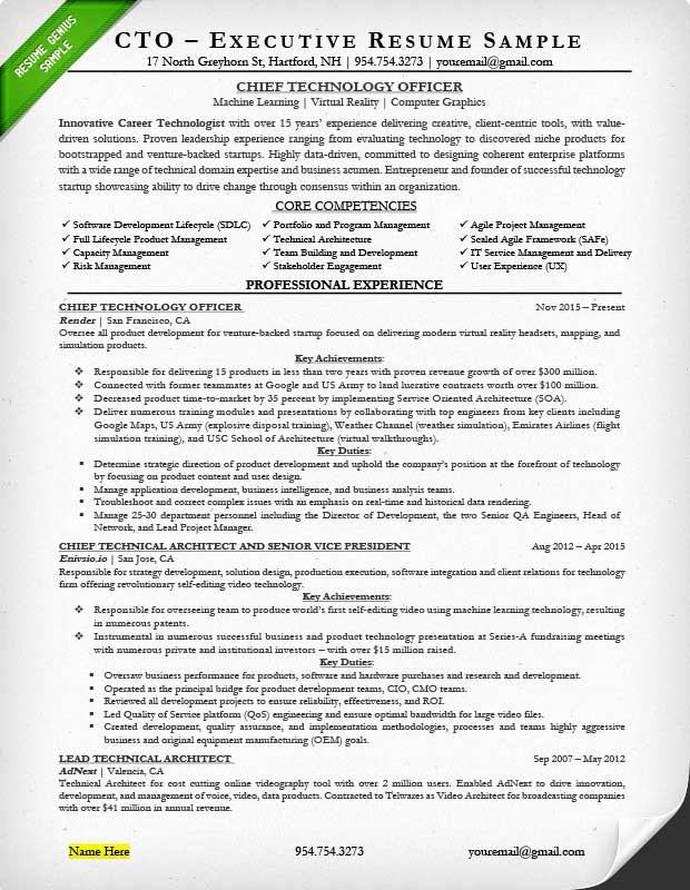 Executive Hybrid Resume Template Unique Executive Resume Examples & Writing Tips