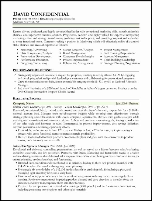 Executive Hybrid Resume Template Unique Hybrid Resume format Work Pinterest