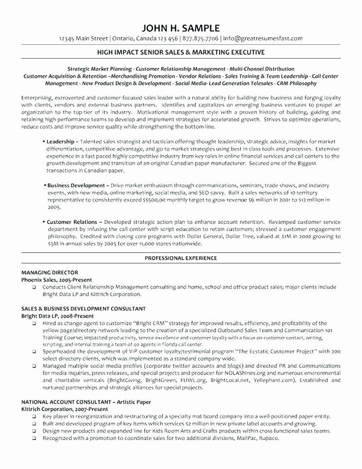 Executive Transition Plan Template Beautiful Executive Transition Plan Template Employee – Haydenmedia