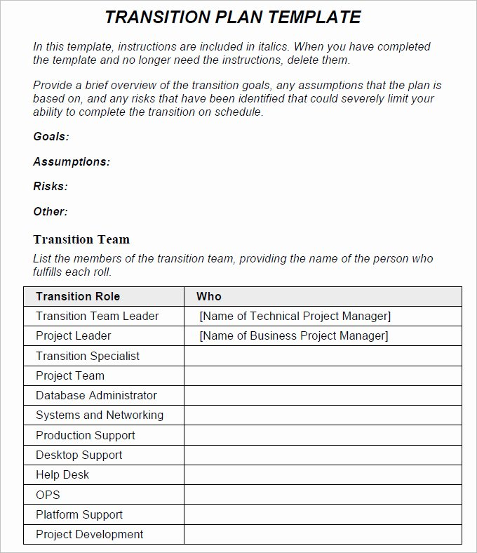 Executive Transition Plan Template New Transition Plan Template Free Word Excel Pdf Documents