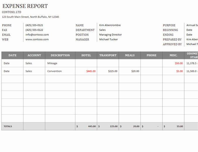 Expense Report Template Word Awesome Business Expense Report