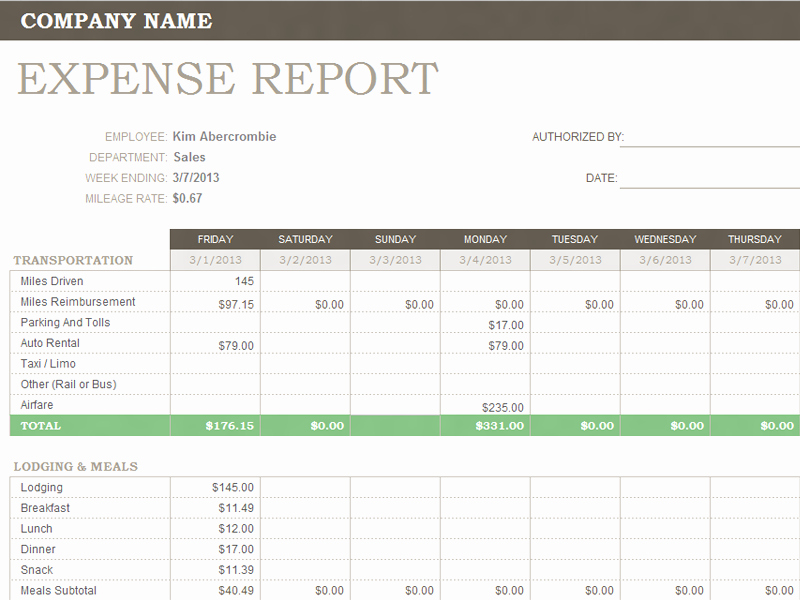 Expenses Report Template Excel Elegant Weekly Expense Report for Microsoft Excel