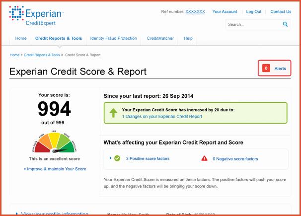Fake Credit Score Template New Fake Credit Report