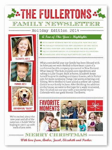 Family Reunion Newsletter Template Beautiful 11 Best Images About Christmas Family Newsletter On
