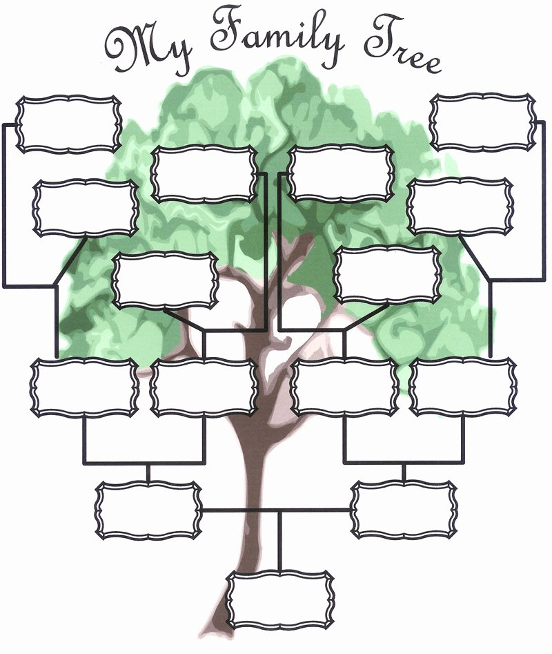 Family Tree Website Template Beautiful Family Tree Templates