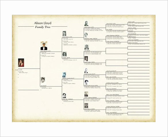 Family Tree Website Template Elegant Family Story Book Template Incep Imagine Ex Co Family Tree