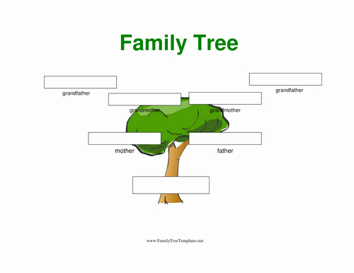 Family Tree Website Template Fresh Family Tree for Homework or Lesson or Childcare by