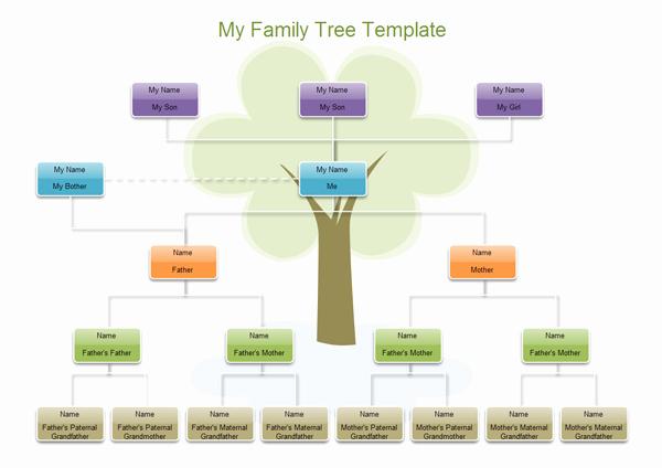 Family Tree Website Template Fresh Suzuki Saaya Xvideos Fice Girls Wallpaper