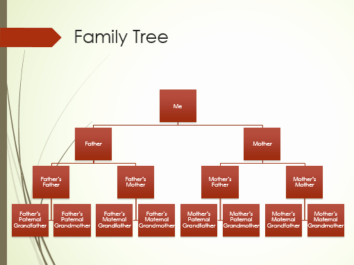 Family Tree Website Template Inspirational Family Tree Chart Vertical Green Red Widescreen