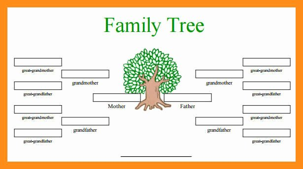Family Tree Website Template Luxury 12 13 Family Tree Spreadsheet Template