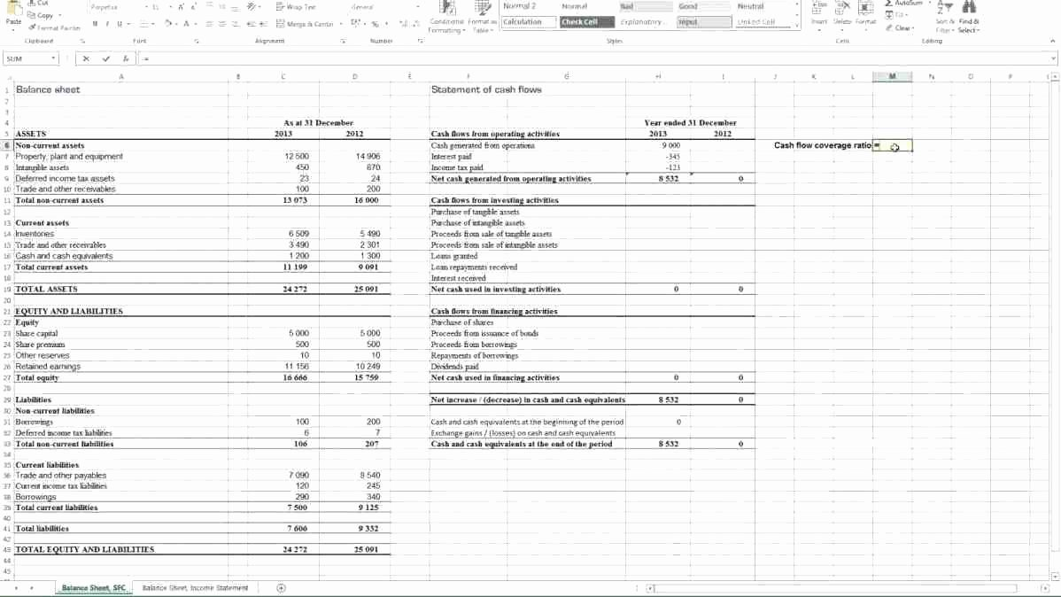 Financial Analysis Excel Template Luxury Template Financial Ratio Analysis Template Excel