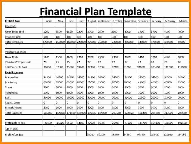 Financial Business Plan Template Lovely Business Plan Financial Template Template Rq
