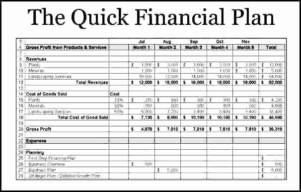 Financial Business Plan Template Unique Financial Plan Template Picture
