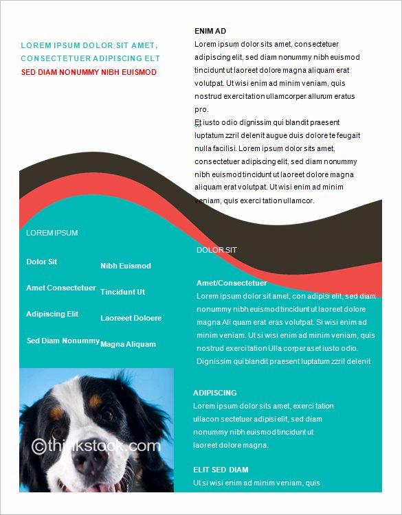 Flyer Template Free Word Luxury Microsoft Brochure Template 49 Free Word Pdf Ppt