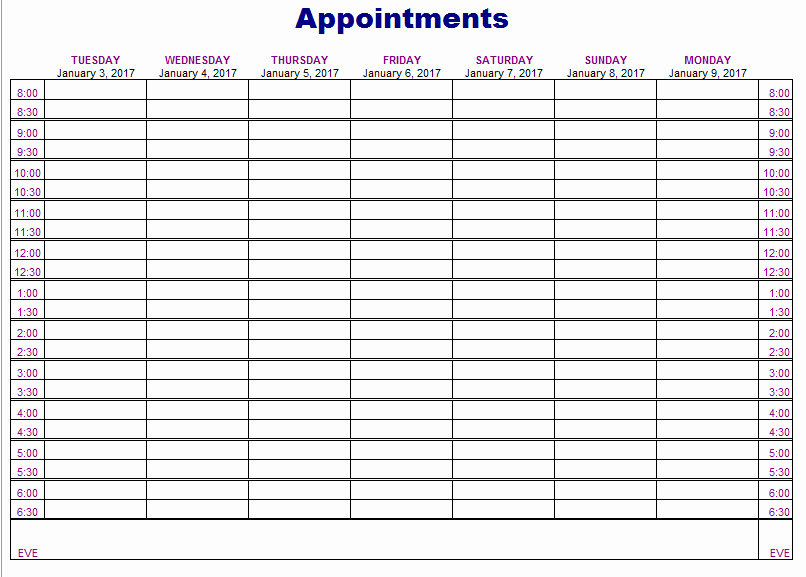 Free Appointment Schedule Template Beautiful Appointment Schedule Template 5 Free Templates
