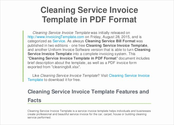 Free Cleaning Invoice Template Elegant 60 Microsoft Invoice Templates Pdf Doc Excel