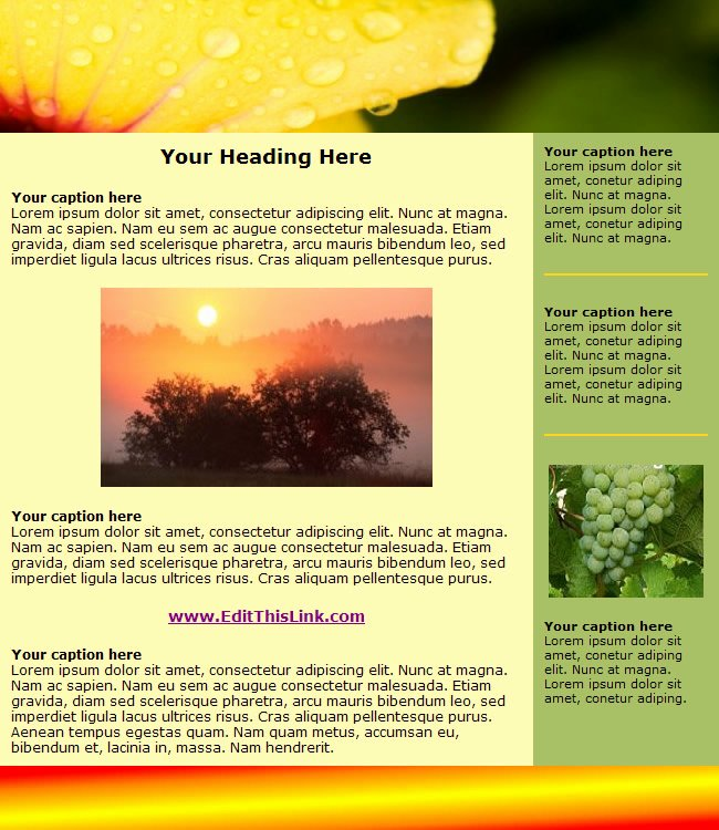 Free Downloadable Newsletter Template Beautiful Free HTML Newsletter Templates Heavensgraphix