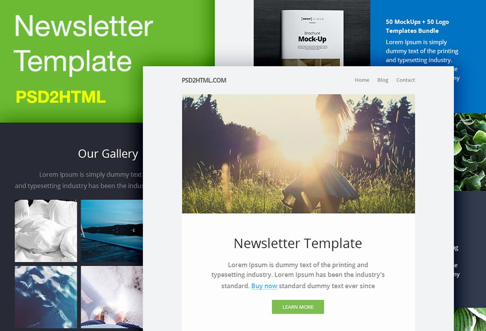 Free Email Template Psd Beautiful Free Newsletter Template Psd & HTML Graphicsfuel