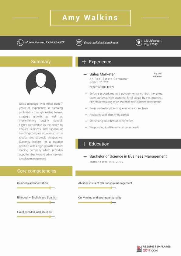 Free Marketing Resume Template Beautiful Marketing Resume Template