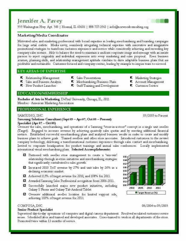Free Marketing Resume Template Beautiful Sales and Marketing Resume Examples