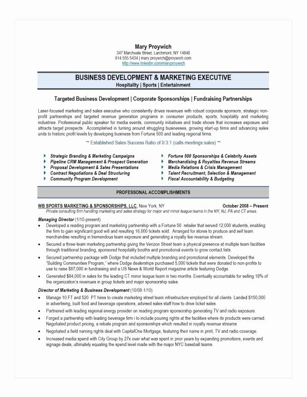 Free Marketing Resume Template Fresh Executive Resume Samples