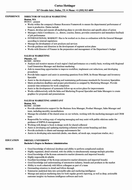 Free Marketing Resume Template Fresh Marketing and Sales Resume Talktomartyb