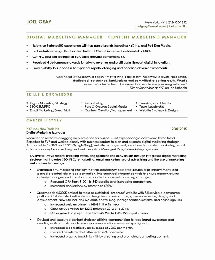 Free Marketing Resume Template Unique Digital Marketing Manager Free Resume Samples
