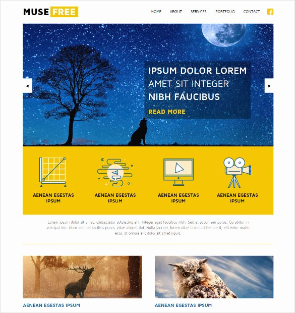 Free Muse Website Template Inspirational 21 Free Muse themes & Templates