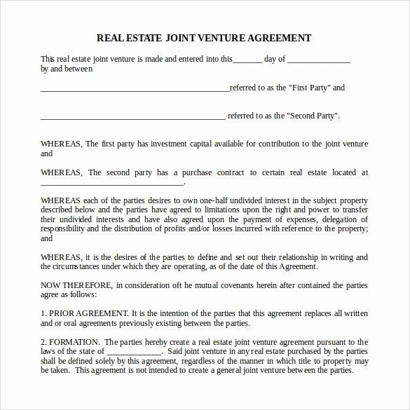 Free Partnership Agreement Template Word Best Of Sample Real Estate Partnership Agreement 10 Free