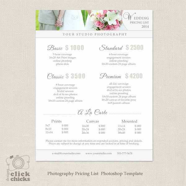 Free Photography Price List Template Fresh Wedding Graphy Pricing List Template 19