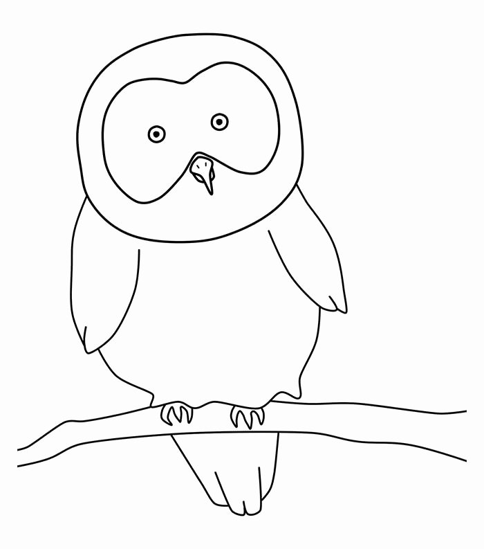Free Printable Owl Template Beautiful 70 Animal Colouring Pages Free Download & Print