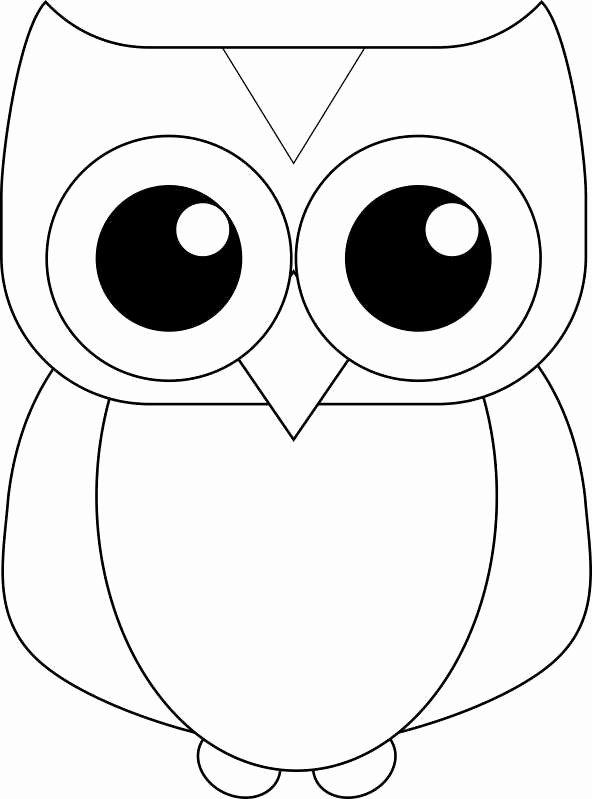 Free Printable Owl Template Beautiful Printable Owl Template for Kids
