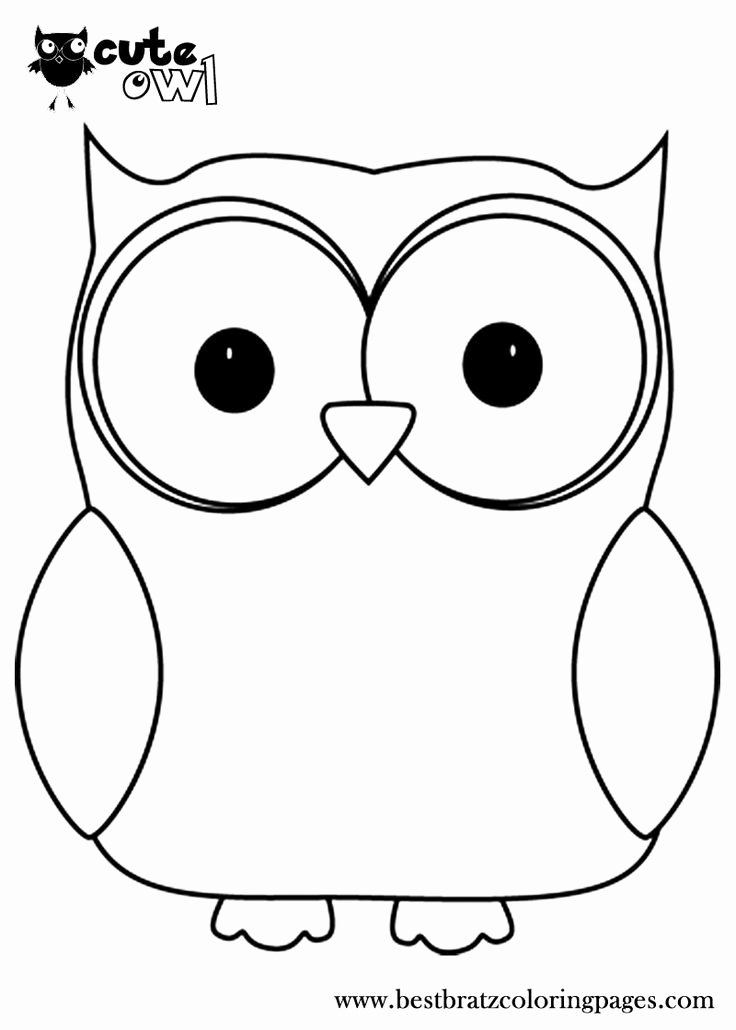 Free Printable Owl Template Best Of Best 25 Owl Templates Ideas On Pinterest