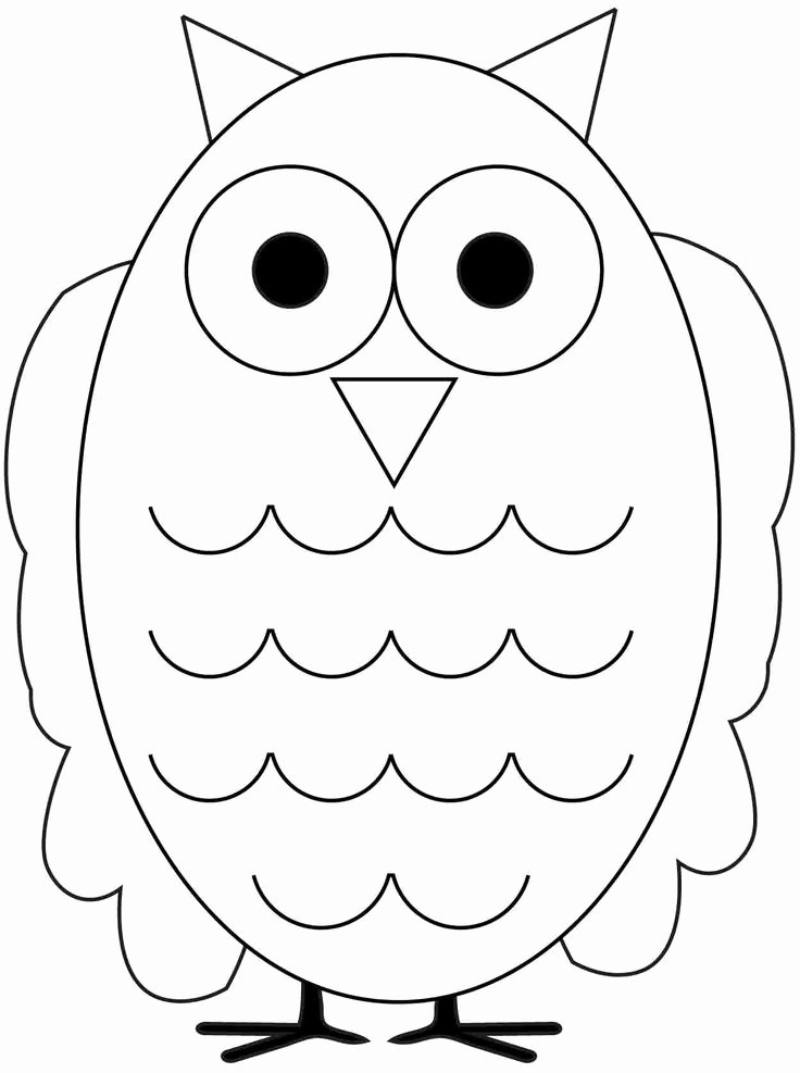 Free Printable Owl Template Luxury 24 Best Owls Images On Pinterest