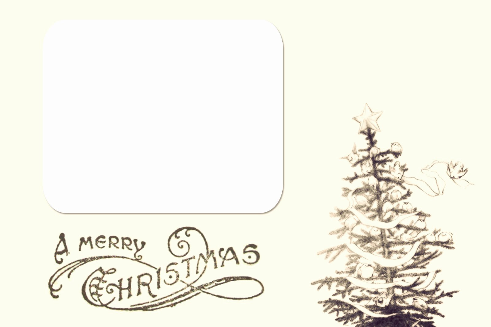 Free Printable Postcard Template Beautiful Chloe Moore Graphy the Blog Free Christmas Card