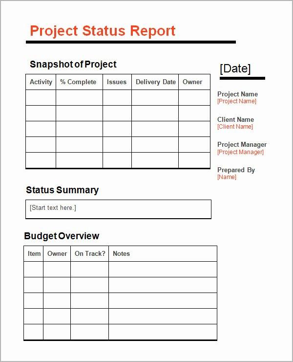 Free Project Status Report Template Elegant 11 Sample Status Reports