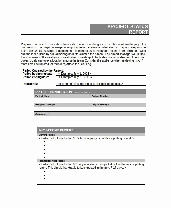 Free Project Status Report Template Fresh 6 Project Status Templates Free Word Pdf Documents