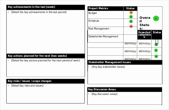 Free Project Status Report Template Inspirational 19 Status Report Templates Free Sample Example