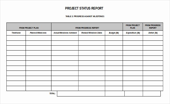 Free Project Status Report Template New 19 Status Report Templates Free Sample Example