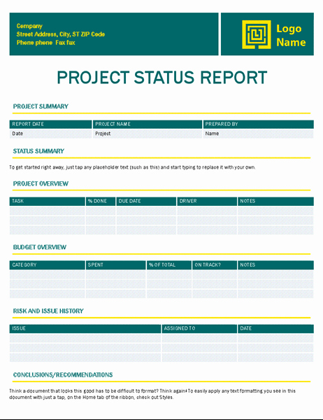 Free Project Status Report Template New Project Status Report Timeless Design