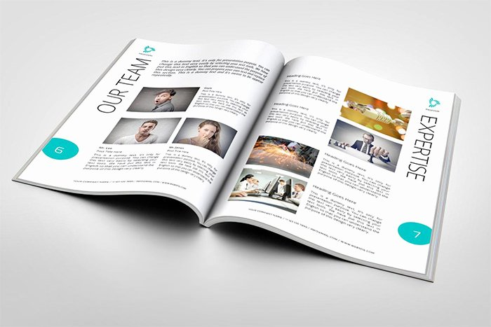 Free Proposal Template Indesign Best Of 39 Best Marketing Proposal Templates & Samples Word