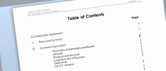 Free Sales Plan Template New Sales Strategy Template for Microsoft Word