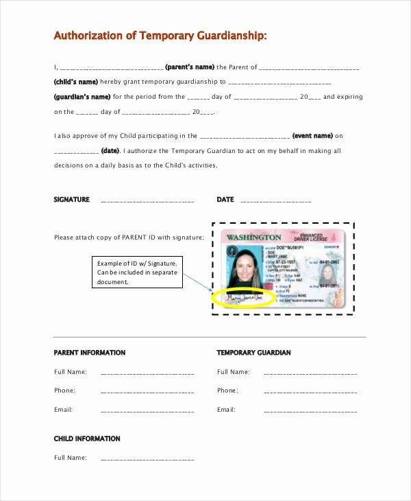 Free Temporary Guardianship form Template Awesome Guardianship forms 9 Free Pdf Word