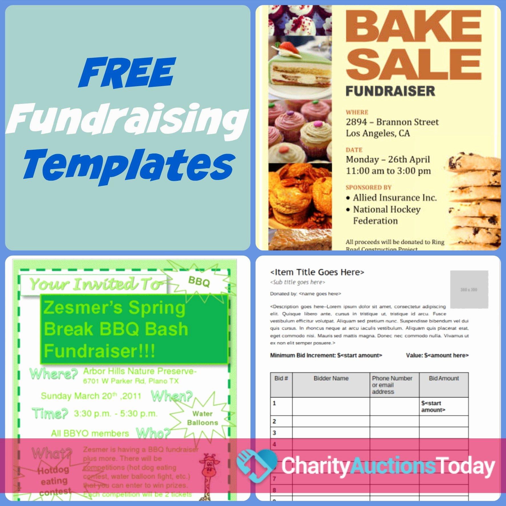 Fundraiser Flyer Template Free Best Of Free Fundraiser Flyer
