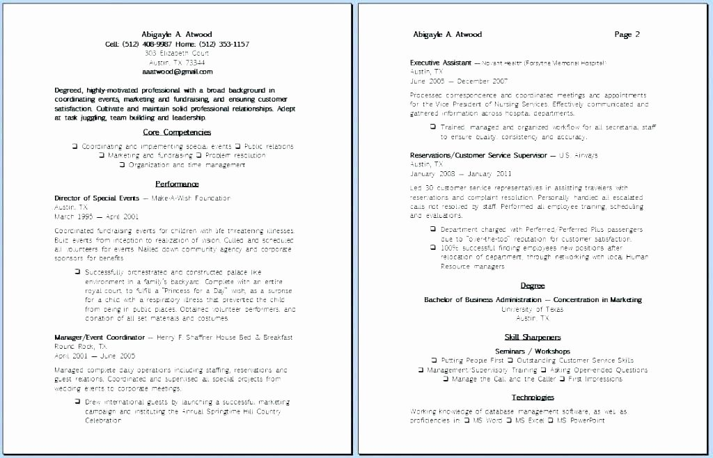 Fundraising Campaign Plan Template Fresh 97 Political Campaign Plan Template Campaign Plan