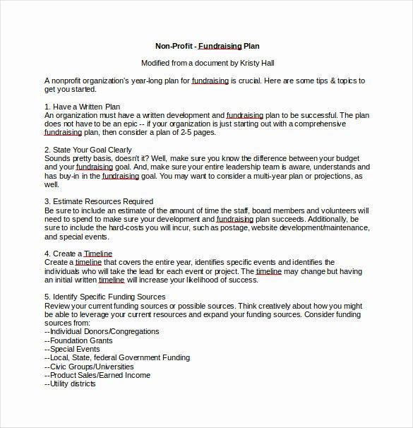 Fundraising Campaign Plan Template Unique 16 Fundraising Plan Templates Free Sample Example